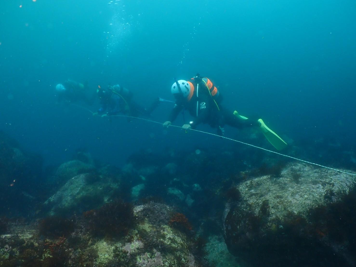 潜水捜索訓練とダイビング事故発生時の対処訓練を開催しました